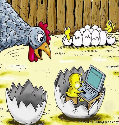 Animals new generation addicted to computer